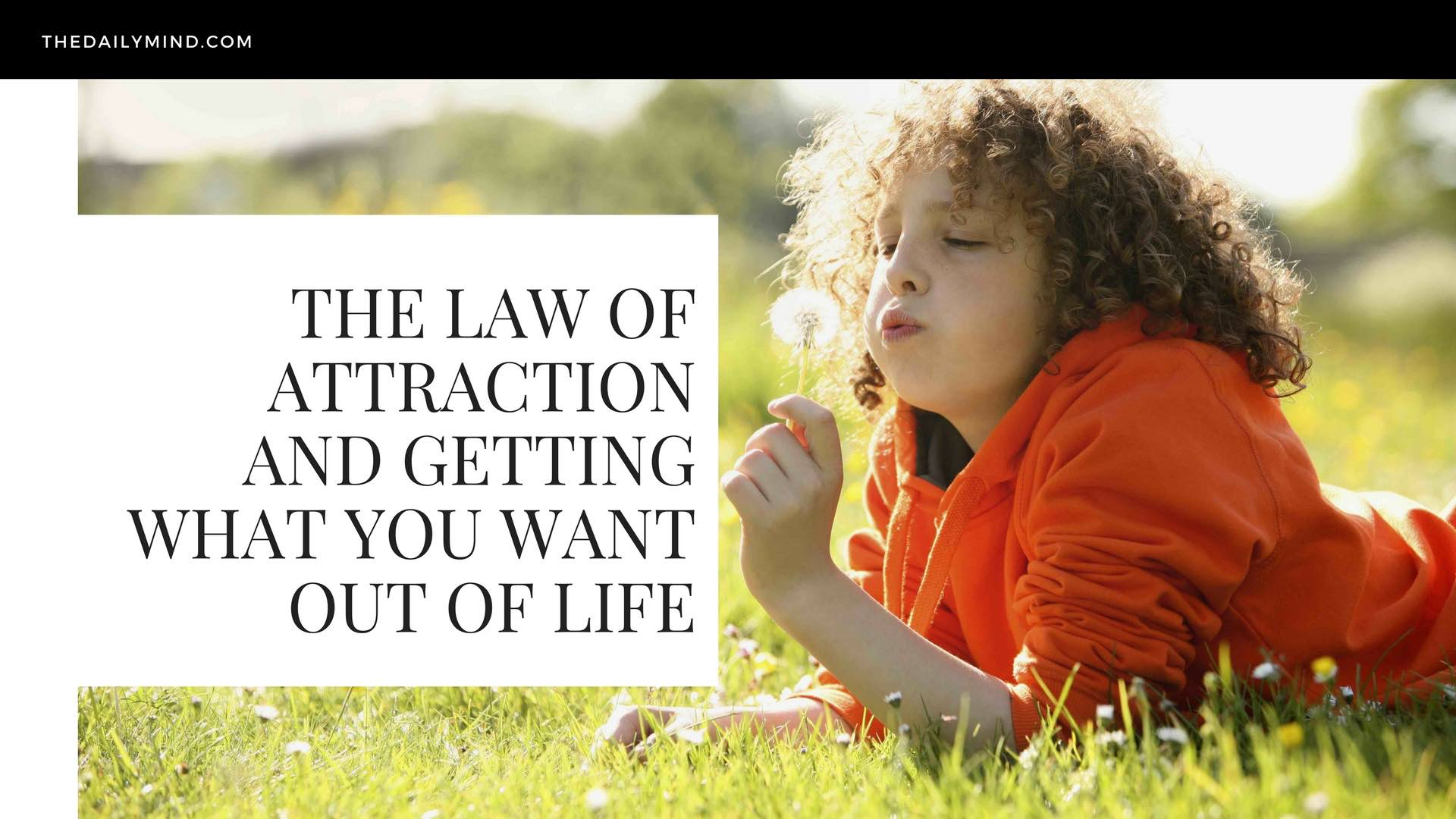 Featured image for The Law of Attraction and Getting What You Want Out of Life