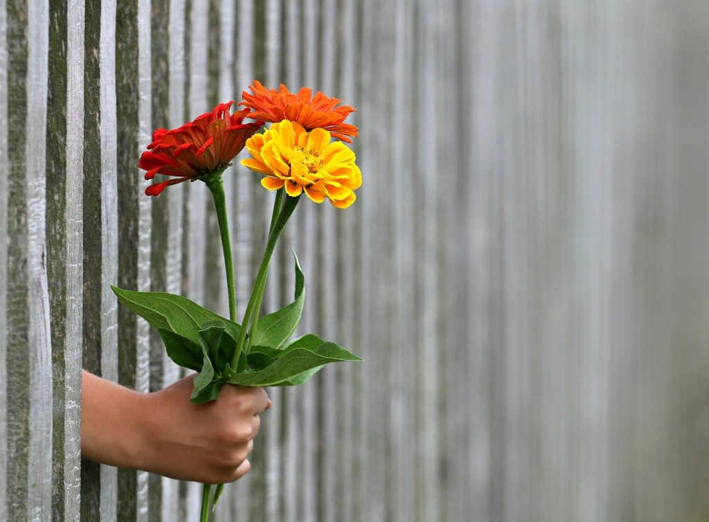 the importance of giving flowers